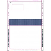 Peel and Seal Laser Mailer Payslip